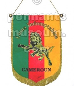 CAMEROUN FOOTBALL FEDERATION