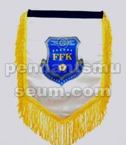 FOOTBALL FEDERATION OF KOSOVO