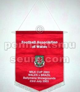 WALES FOOTBALL ASSOCIATION