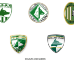 COLOURS_AND_BADGES AVELLINO