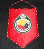MOZAMBICAN FOOTBALL FEDERATION
