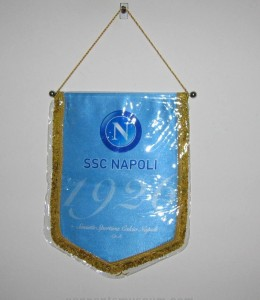 Printed pennant in use from the season 2015 / 2016