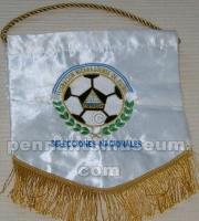 NICARAGUAN FOOTBALL FEDERATION