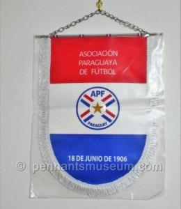 PARAGUAYAN FOOTBALL ASSOCIATION