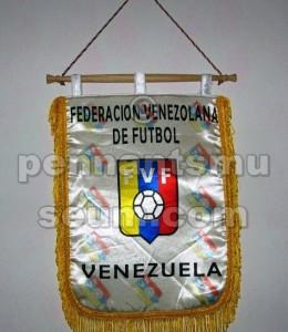 FEDERAZIONE CALCISTICA DEL VENEZUELA