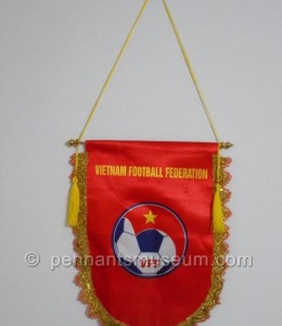 VIETNAM FOOTBALL FEDERATION